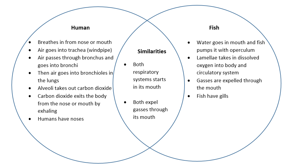 fishing compare and contrast This is a debate that has gone on for ages, and it really depends on your objectives and what thrills you when you fish check out our comparison here.